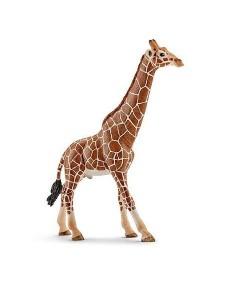 Giraffa maschio Schleich 14749