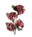 Fiore Natalizio rosso L'Oca Nera 97 cm  1XM560.11